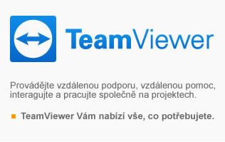 TeamViewer Business předplatné Single User 1rok